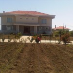 IMG00025-20120612-1458