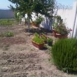 IMG00026-20120612-1458